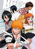 Bleach Shinigami Collection 01 (Eps 1-41) (DVD) AU