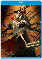 The Ancient Magus Bride - Part One DVD / Blu-Ray Combo (Limited Edition) (Blu-ray) AU
