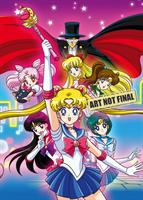 Sailor Moon R (Season 2) Complete Series (DVD) AU