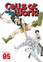 Cells at Work! 5 (Manga) US
