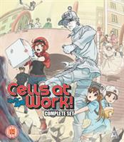 Cells at Work! Collection (Blu-ray) UK
