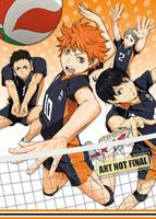 Haikyu!! Complete Season 1 (Dual Language Edition) (DVD) AU